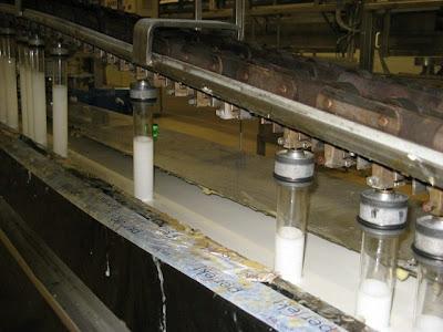 http://asalasah.blogspot.com/2013/12/foto-foto-proses-pembuatan-kondom.html