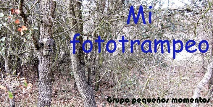 Mi fototrampeo