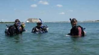 Radio Island Diving