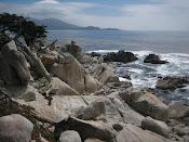 Grey On The Rocks