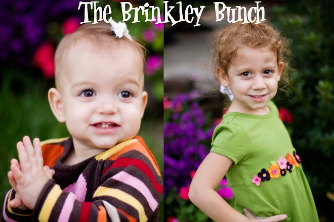 The Brinkley Bunch