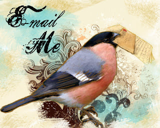 fancy mail finch . . . who is retired because he doesn't look quite right in the sidebar