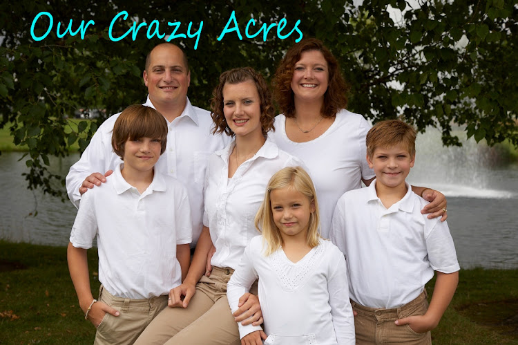 Our Crazy Acres