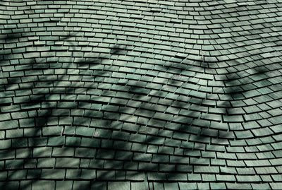 check out the cool shingles on the cabin roof!