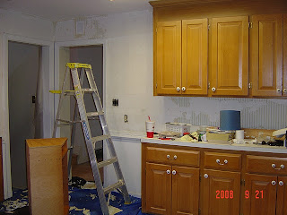 Pictures Of Renovated Kitchens