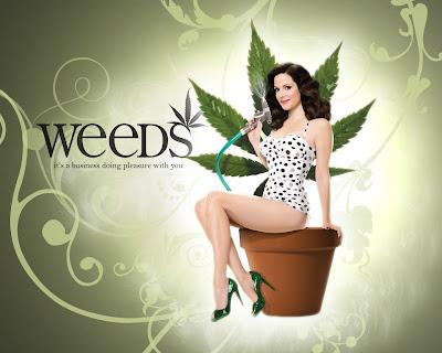 weeds. Assistir Online Weeds 5ª