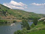 Douro 2010