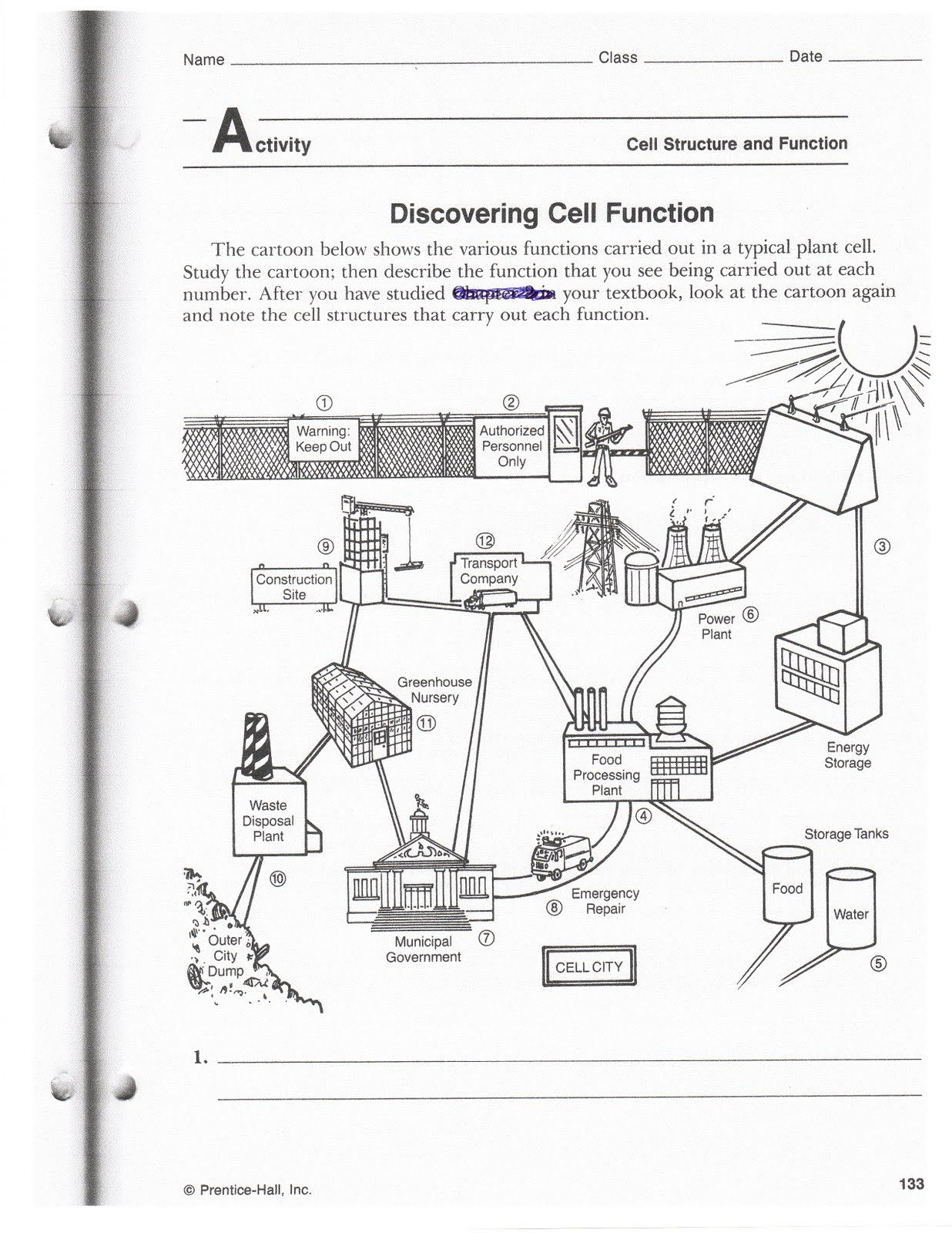 Worksheets Analogy Worksheet quarter 2 copy mrs bhandaris grade 7 science cell city drawing example