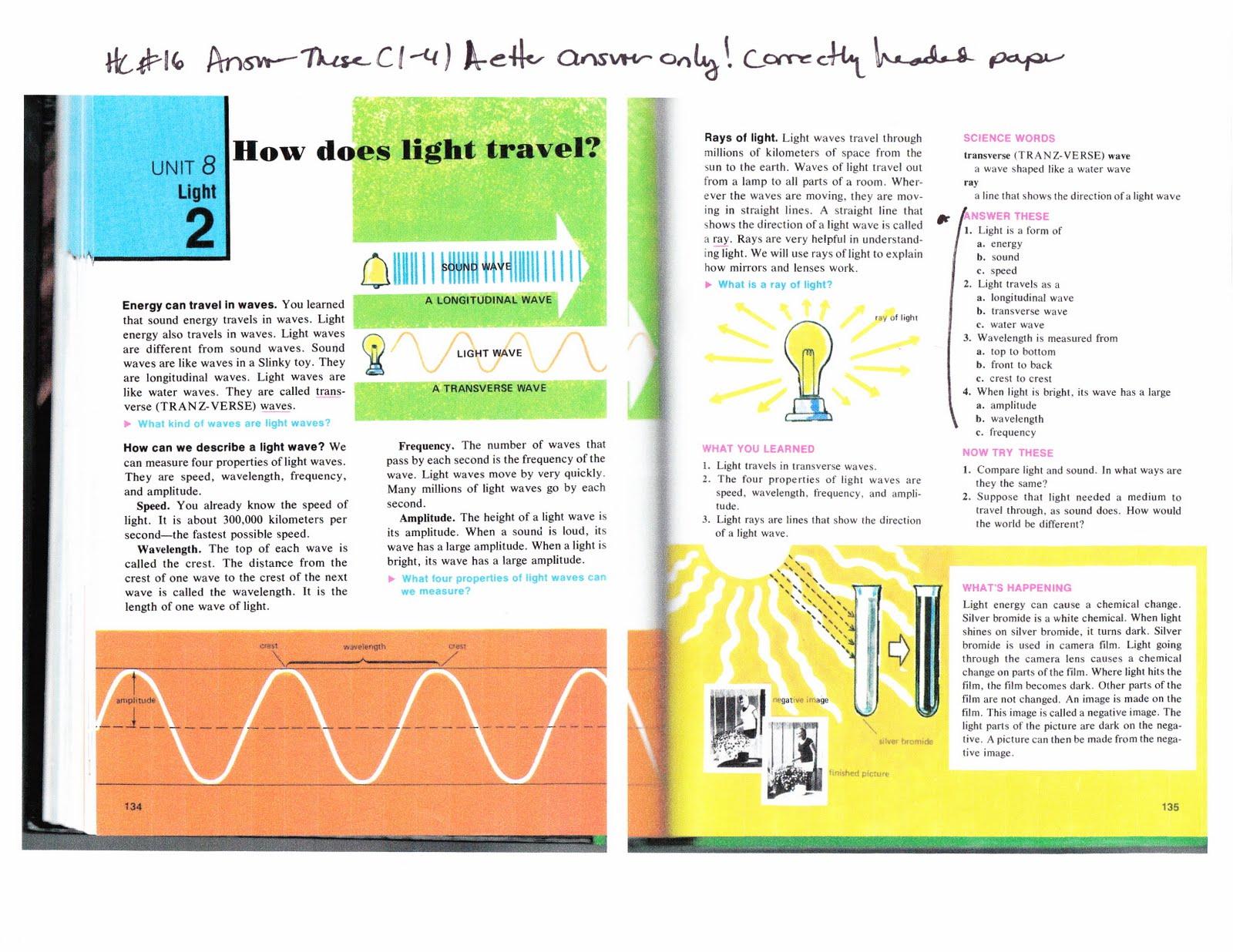 dr gayden 39 s seventh grade science class october 2010. Black Bedroom Furniture Sets. Home Design Ideas