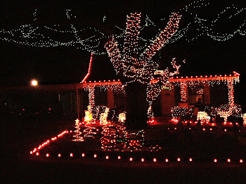 Great Christmas Decor!