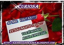 OFERTA  DA  QUERIDA  SANDRA  DO  BLOG  CURIOSA...!