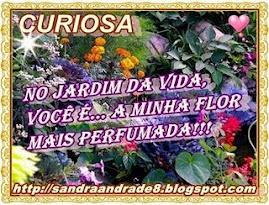 OFERTA  DA  QUERIDA  SANDRA...!