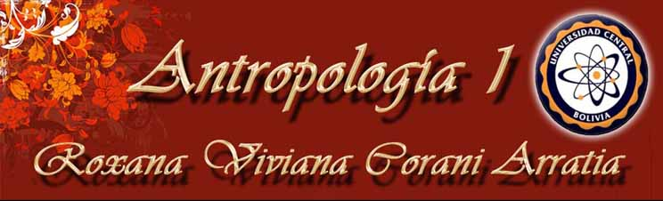 Roxana Viviana Corani Arratia