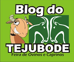 Blog do TEJUBODE