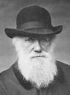 CHARLES DARWIN EN PUERTO GABOTO