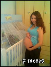 7 meses