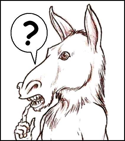 [burro.JPG]