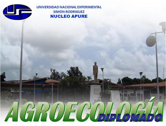 Diplomado en Agroecología