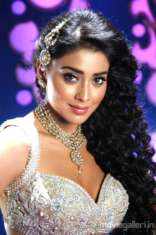 Shriya Saran Hot Pics in Komaram Puli Komaram Puli Shriya Hot Item Song Stills wallpapers