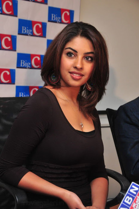 richa gangopadhyay hot photoshoot