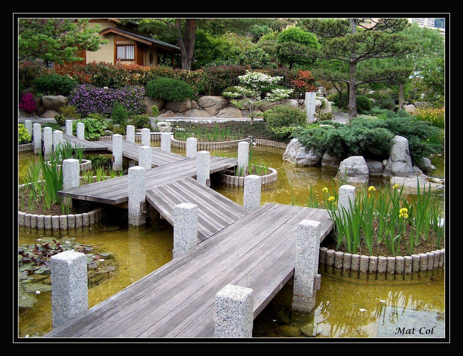 Love at first sight japanese gardens le jardin japonais for Jardin japonais