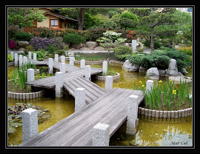 Love at first sight japanese gardens le jardin japonais for Jardin japonais monaco