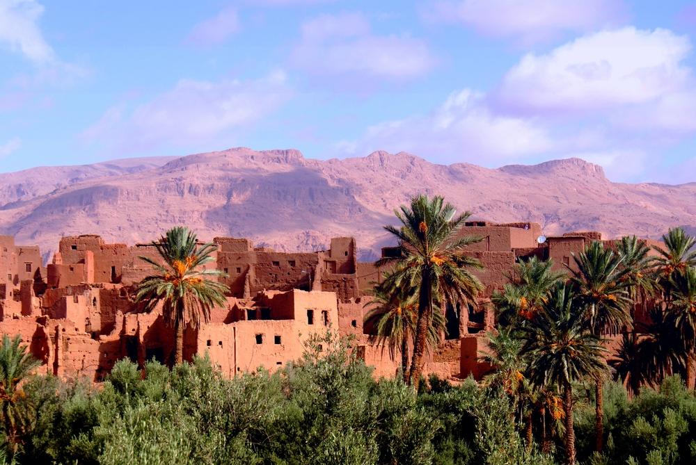 vente de levitra naturel maroc