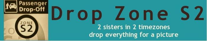 DropZoneS2