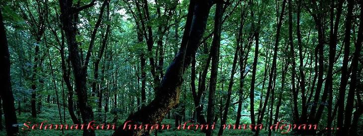 Selamatkan Hutan Kita
