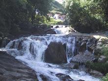 Rio Ferreira (Quedas da Ribeira)