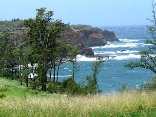 Living in Hawaii, North Kohala