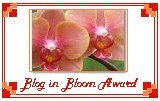 Blog in Bloom Award
