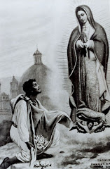 Juan Diego and The Virgin