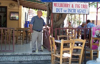 Dut Ağacı Kahvehanesi