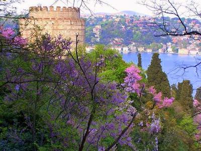 İstanbul'un rengi, Boğaz'ın rengi erguvan...