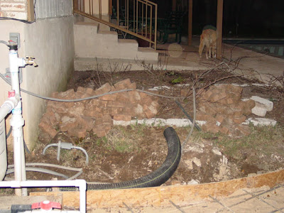 Divasofthedirt,old yard
