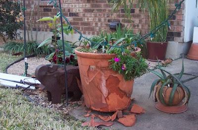 Divasofthedirt, broken pot