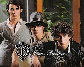 jonas brothers in spanish!!!!