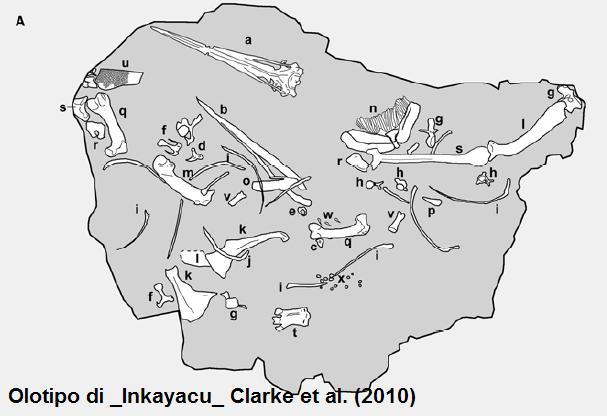 Theropoda non di solo osso vive il paleontologo - Colorazione pagine pinguini ...