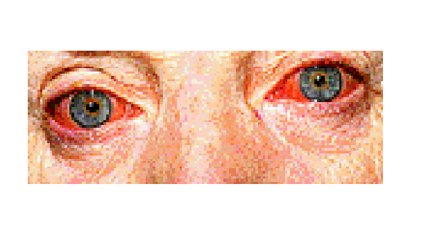 how eyes work: