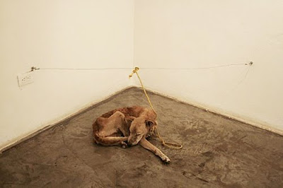 starving dog art Vargas
