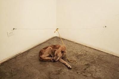 starving dog art Vargas