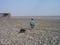 Penarth Beach