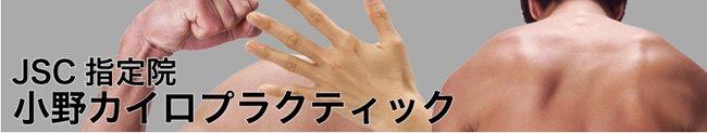 小野カイロプラクティックオフィス