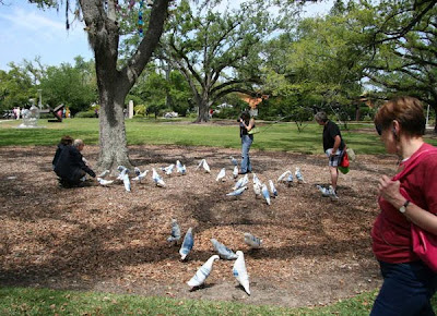 Christy Heng's Birds at the Besthoff Sculpture Garden, New Orleans Museum of Art