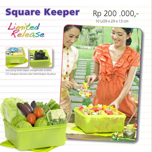 http://1tupperware.blogspot.com/2010/11/tupperware-square-keeper.html