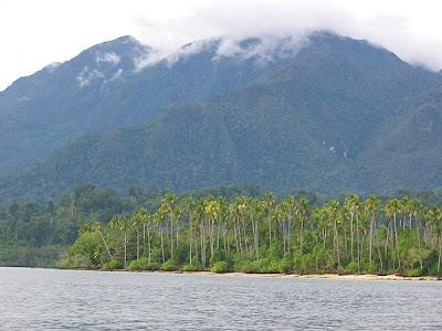 http://1.bp.blogspot.com/_6i_PYKx-A_s/RuzWVpEI9hI/AAAAAAAAAGs/1ZXhrtaN8to/s400/pulau+seram+ambon.jpg