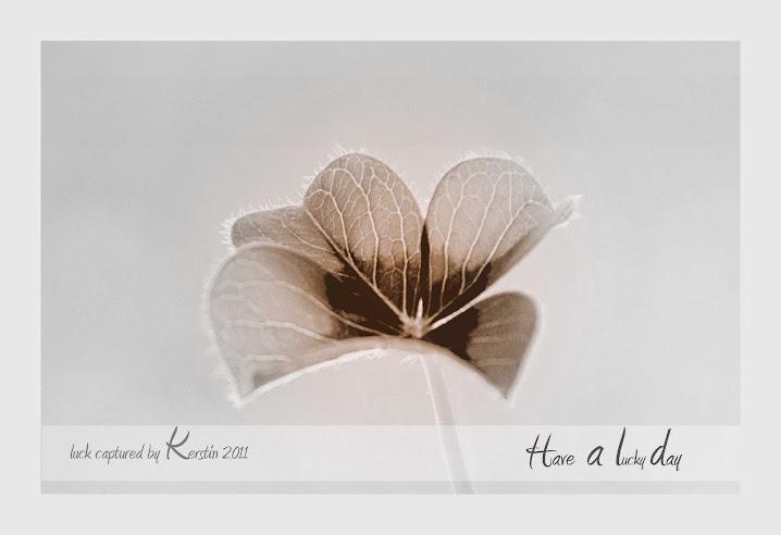Kerstins Fotoblog