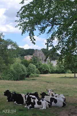 Légendaire Cotentin : Du château de Gratot à l'abbaye de Hambye H1