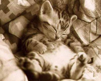 A dormir!